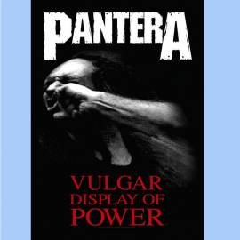 Steag PANTERA - Vulgar Display Of Power